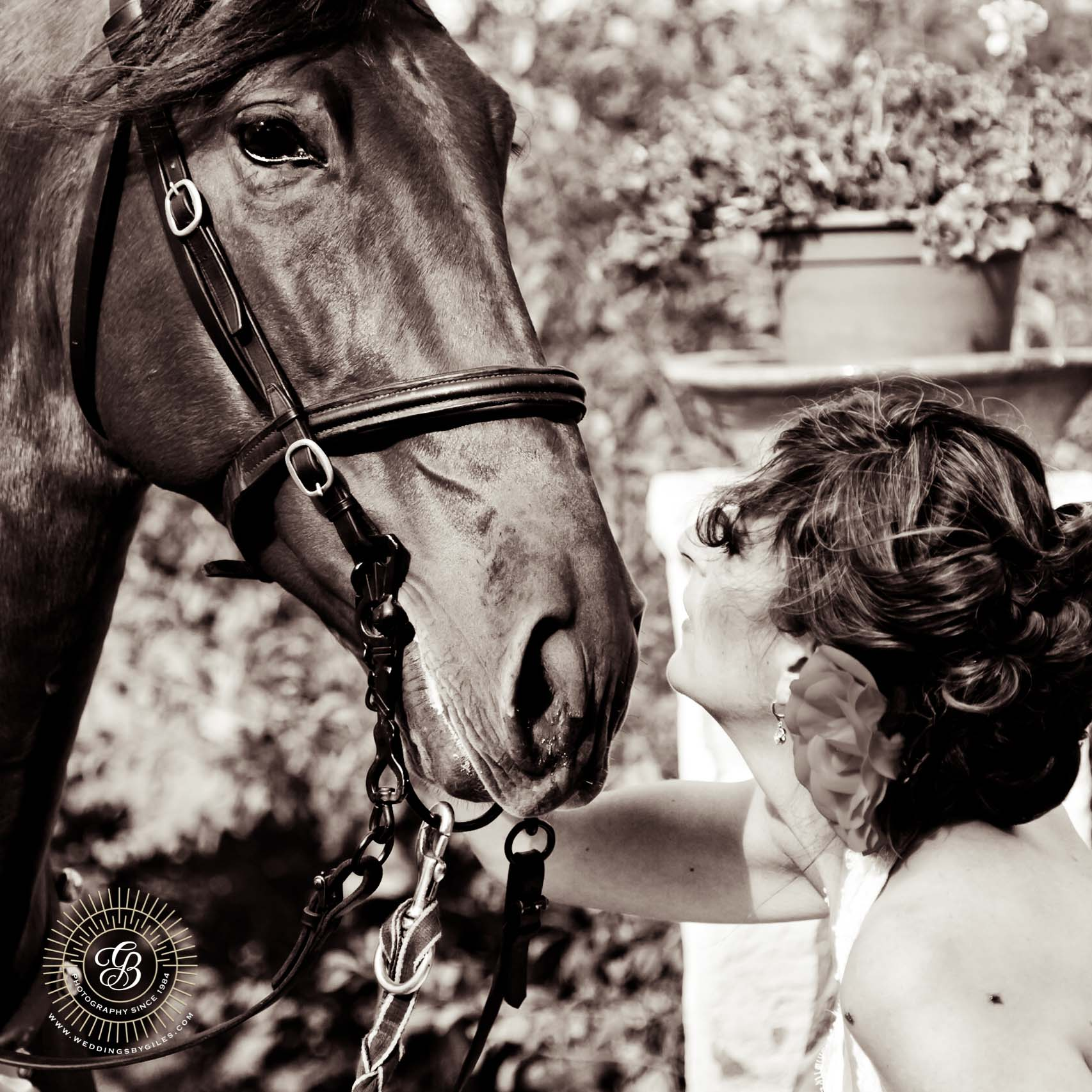 Bride talks with her horse