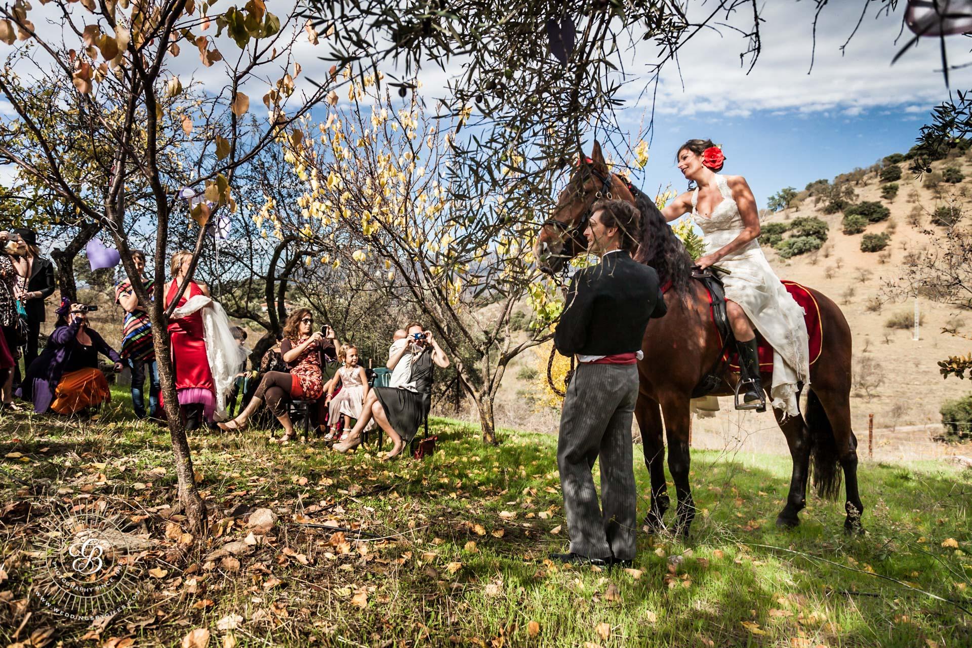 Bride astride her horse