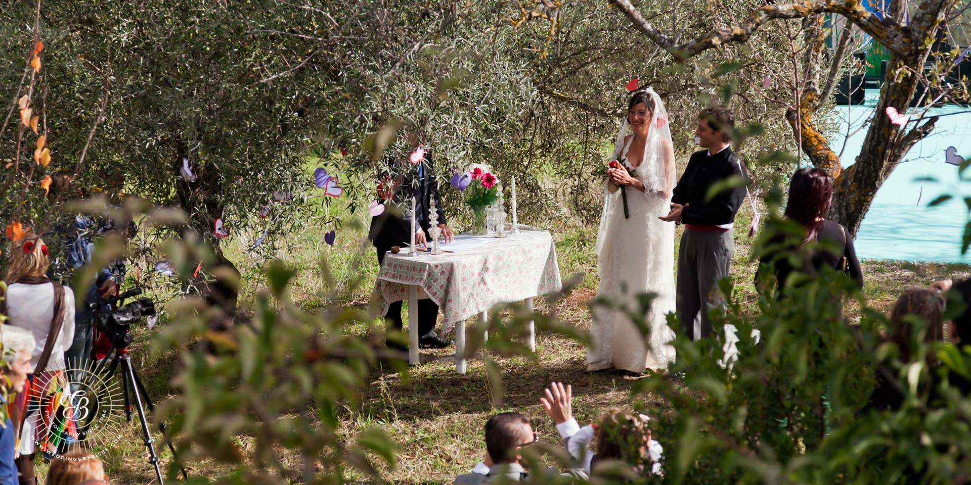 wedding in spanish olive grove