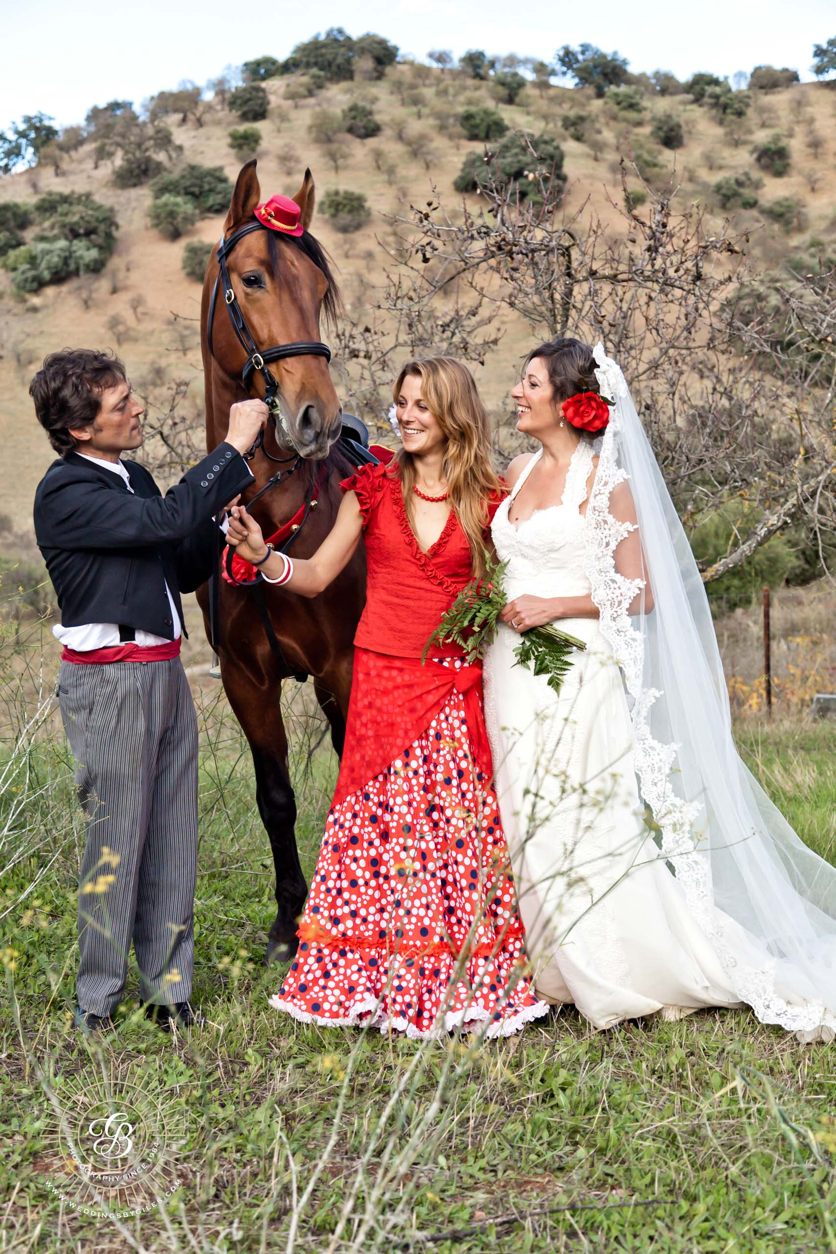 wedding moment with a horse