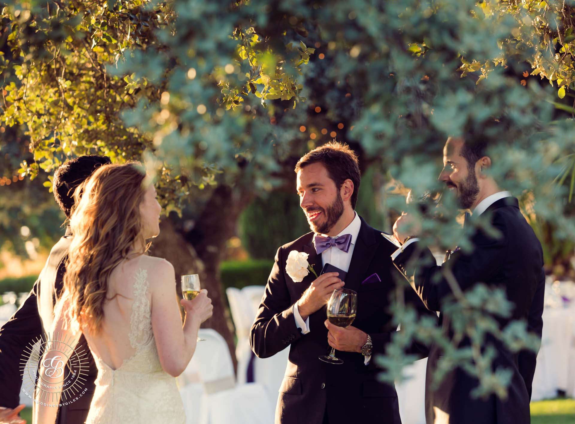 happy wedding guests in andalucia