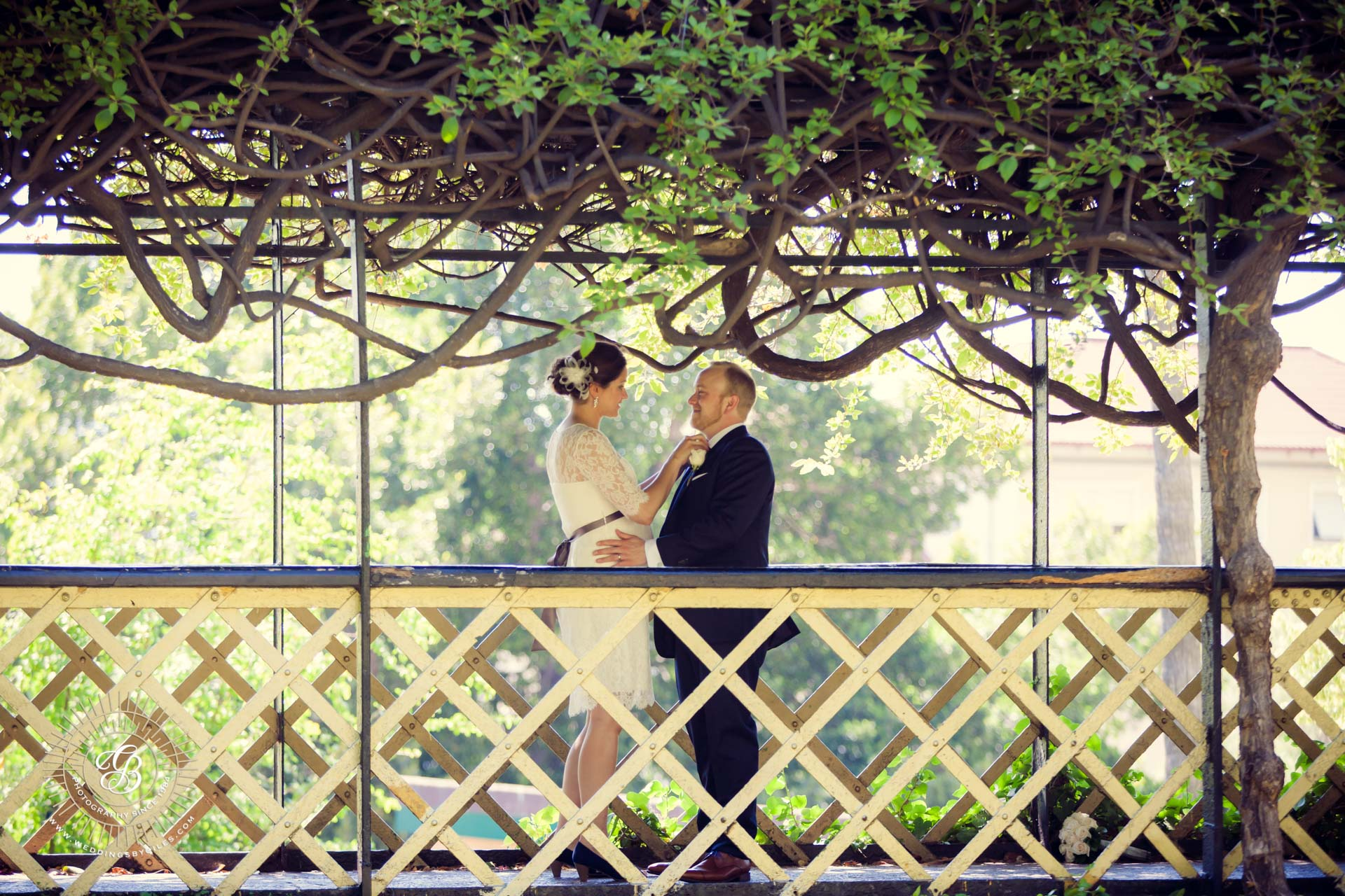 bride and groom on the bridge in the alameda gardens