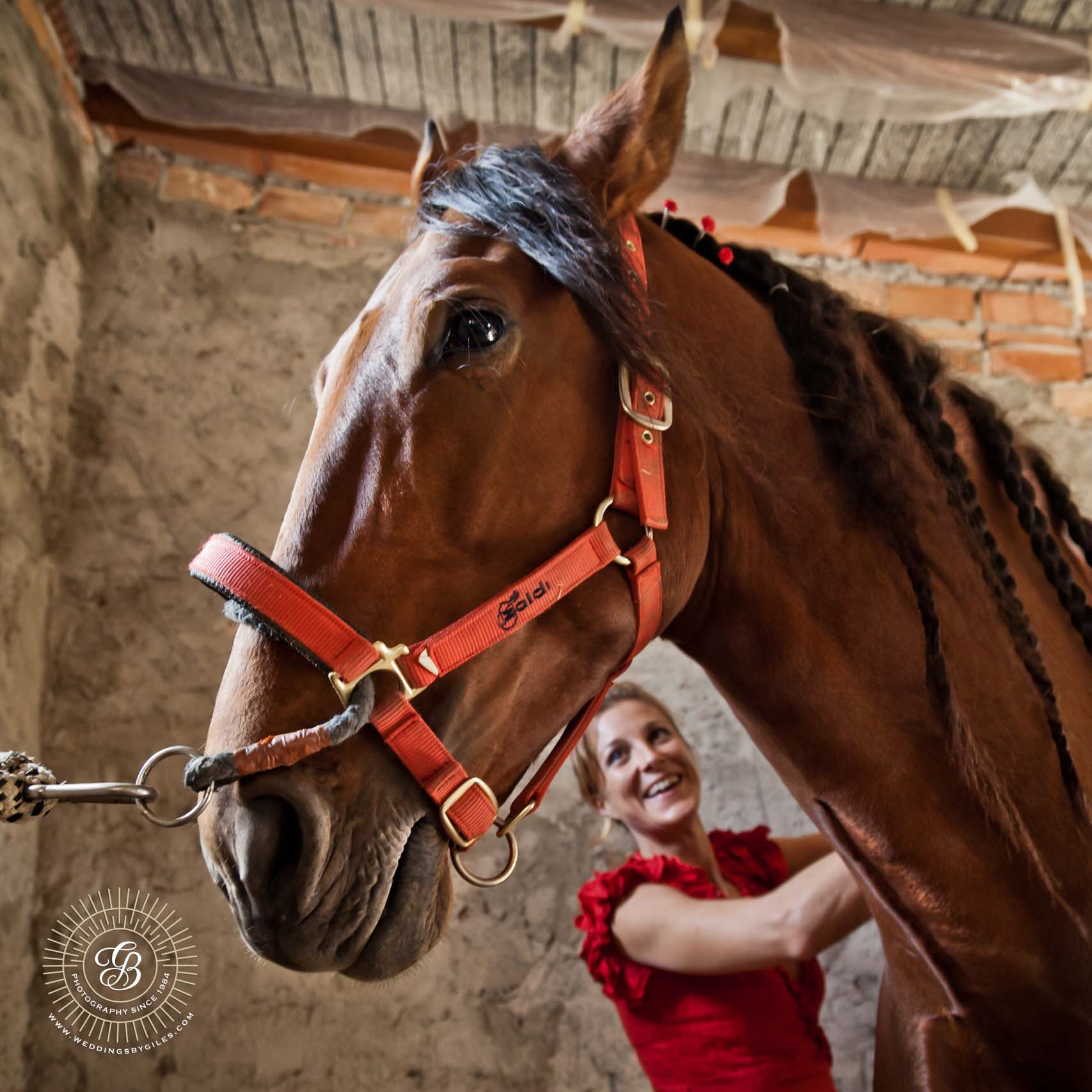 Wedding preparations in the stables
