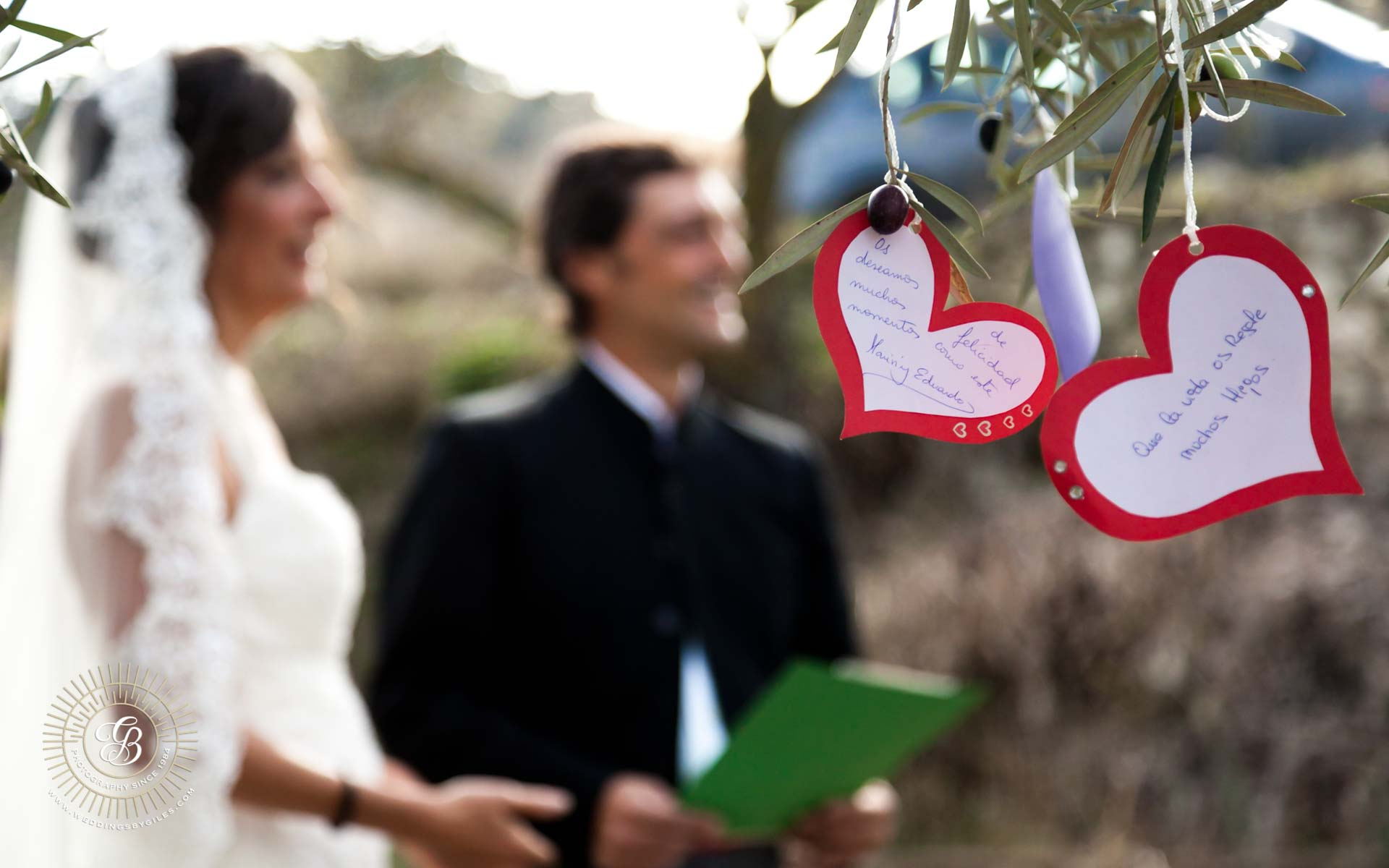 wedding messages tied in tree