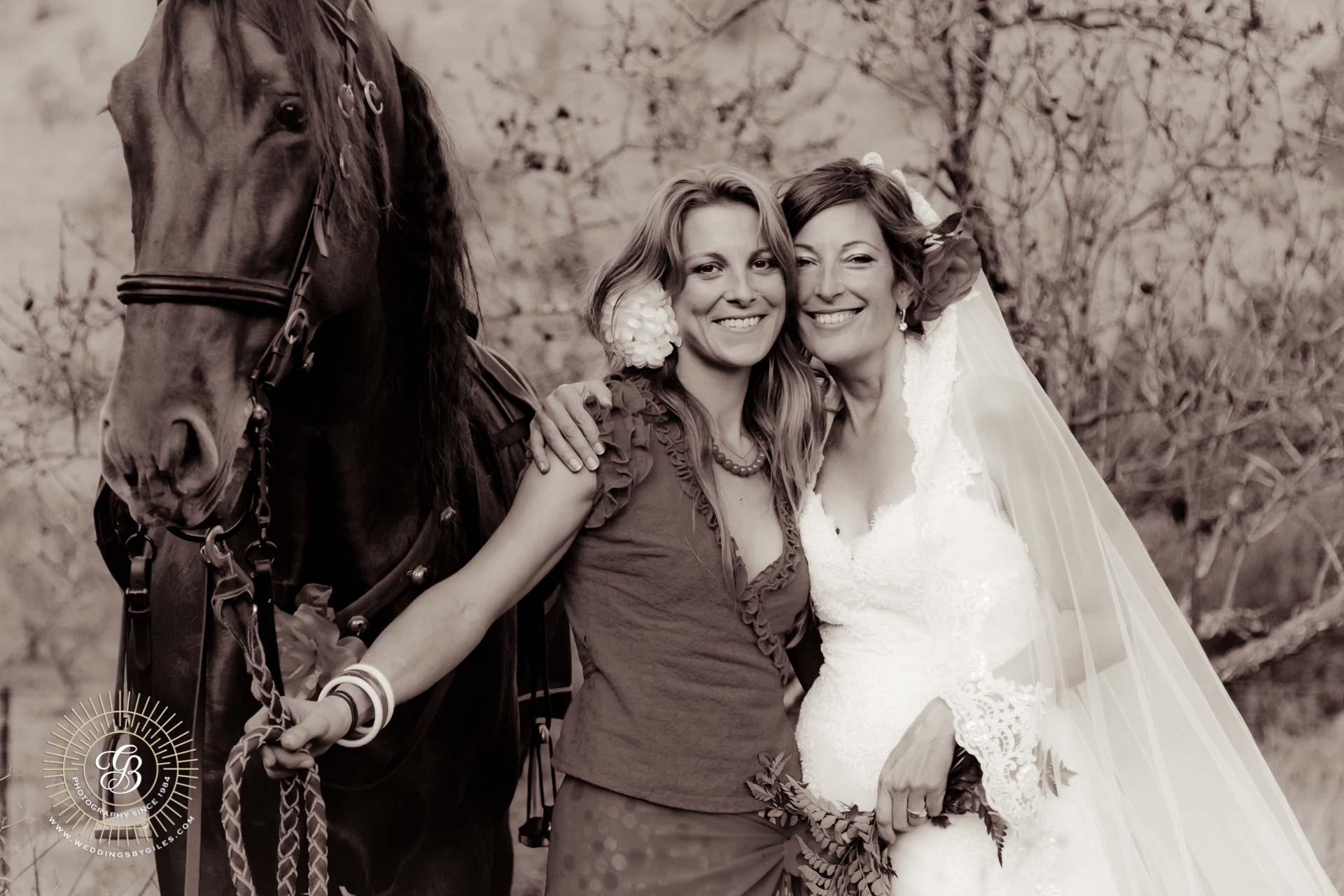 wedding portrait & horse