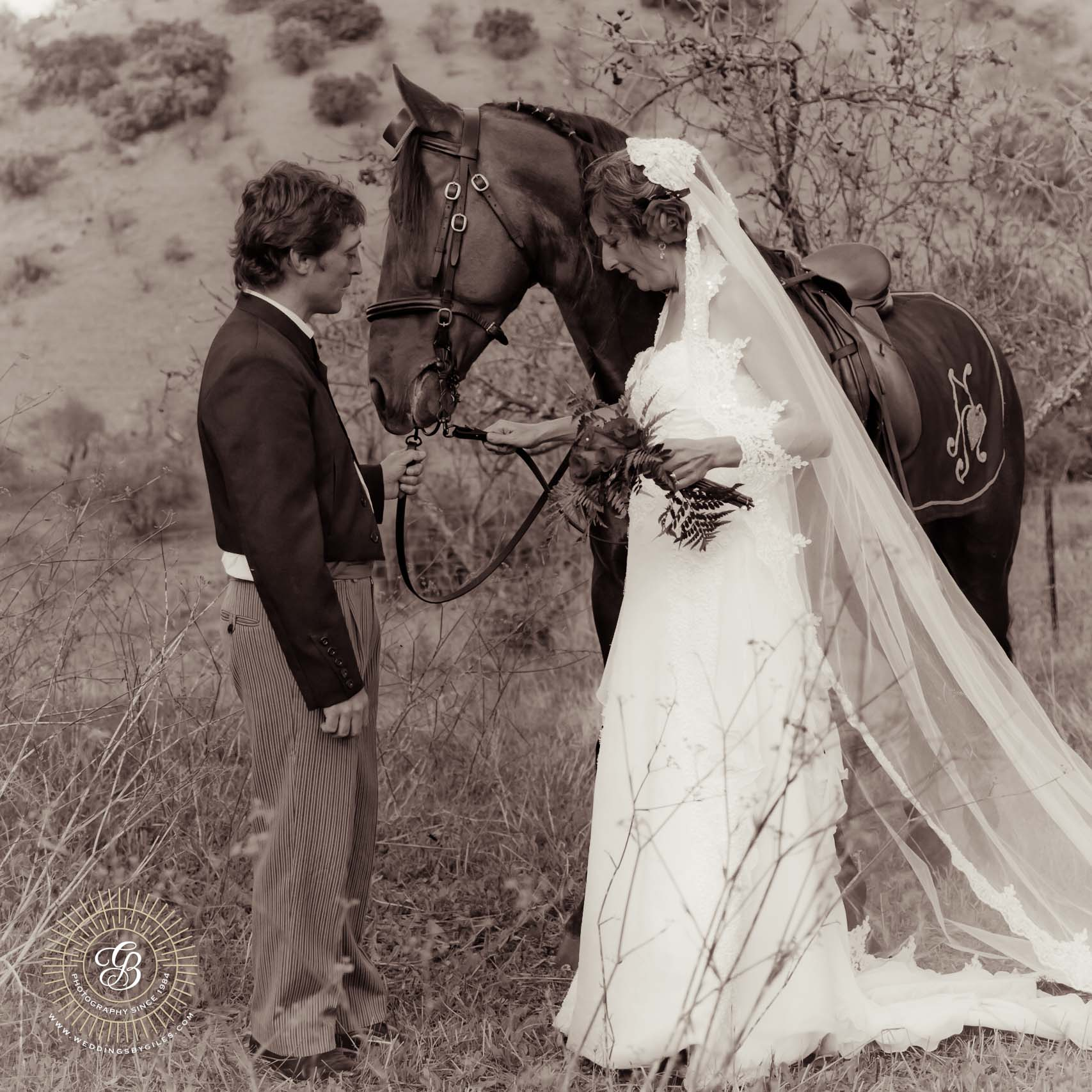 bride groom and horse in black & white