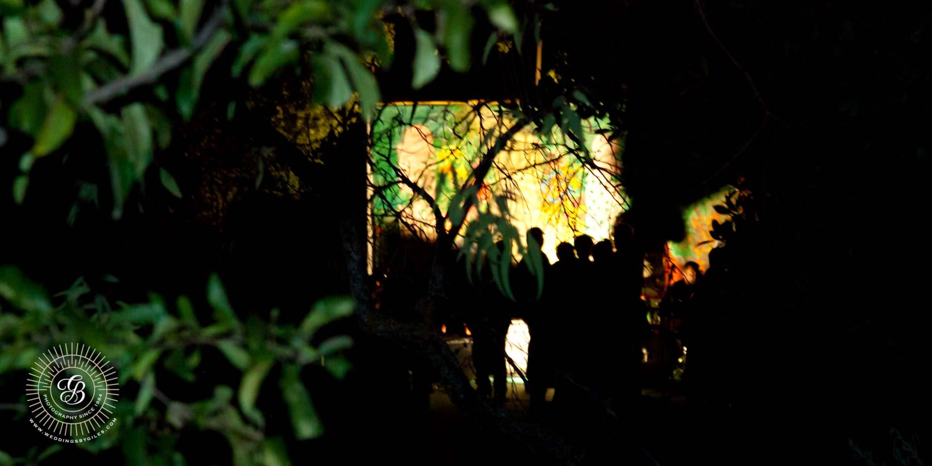 wedding party through the trees