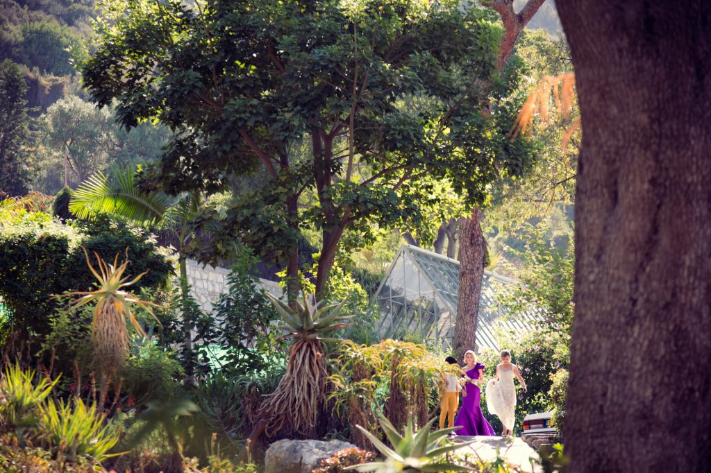 Wedding party in the Alameda Gardens