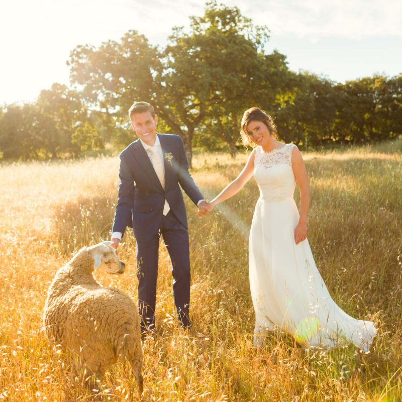 wedding photographer review Spain